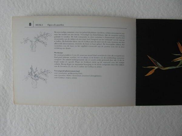 IMG 3116