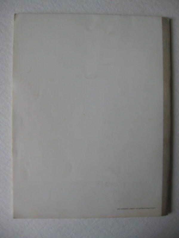 IMG 4164